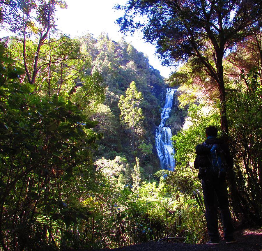 Cascade proche de Piha