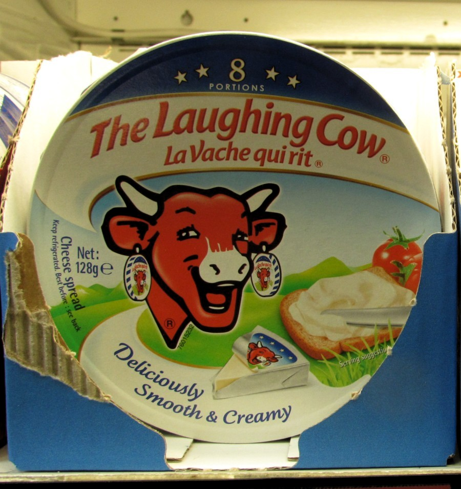 The Laughting Cow