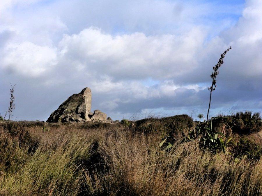 Un rocher du lion - arrière-plage de Whatipu